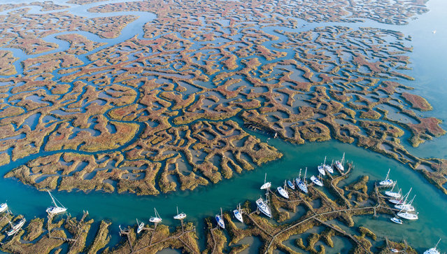 """An aerial view of marshland in Essex, England on October 15, 2017 that has received an influx of visitors after being featured in the opening credits of ITV drama """"Liar"""". (Photo by Bav Media/Rex Features/Shutterstock)"""