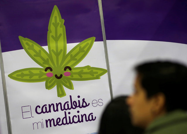 """A visitor looks at a poster during the second day of the marijuana fair ExpoWeed in Mexico City, Mexico August 13, 2016. The poster reads: """"Cannabis is my medicine"""". (Photo by Henry Romero/Reuters)"""