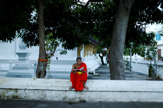 A Buddhist monk reads a book outside a temple in Luang Prabang, Laos July 31, 2016. (Photo by Jorge Silva/Reuters)