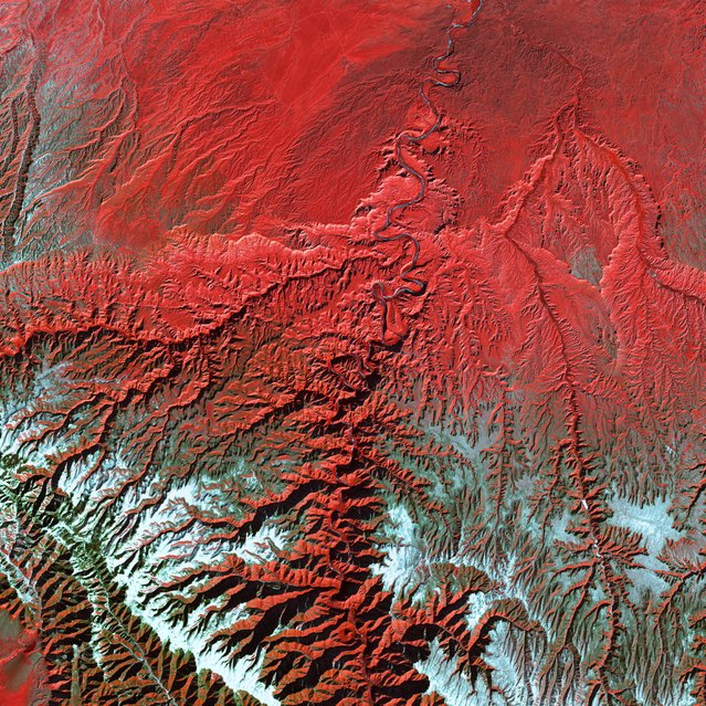 Utah's Green River cuts across the Tavaputs Plateau (top) before entering rugged Desolation Canyon (center), which cuts southward through first the Roan and then the Book Cliffs – two long, staircase-like escarpments that run west-east from Utah into Colorado. Desolation Canyon, seen in the center of this image, was named by the famous American explorer John Wesley Powell, for its intimidating, rugged terrain. Eighty miles long and nearly as deep as the Grand Canyon, it is one of the largest unprotected wilderness areas in the West. This image shows the Green River cutting a path through the vegetation of the Plateau. The river appears blue while the vegetation is red. Snow dusts the peaks of the Roan Cliffs, which appears light blue to white. This image was acquired by Landsat 7's Enhanced Thematic Mapper plus (ETM+) sensor on December 31, 2000. This is a false-color composite image made using near-infrared, red, and green wavelengths. The image has also been sharpened using the sensor's panchromatic band. (Photo by NASA/GSFC/USGS EROS Data Center)