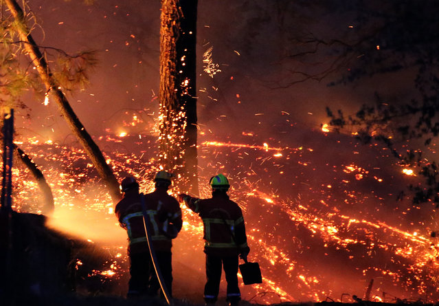 Firefighters battle a large fire at Chiberta forest in Anglet, southwestern France, Thursday, July 30, 2020. (Photo by Bob Edme/AP Photo)