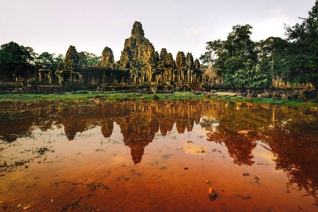 Ta Prohm temple. (Photo by Alex Teuscher/Caters News)