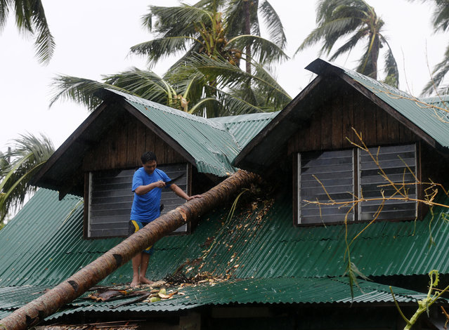 A Filipino residents clears a fallen coconut tree on a house in Borongan city, Samar island, Philippines, 07 December 2014. (Photo by Francis R. Malasig/EPA)