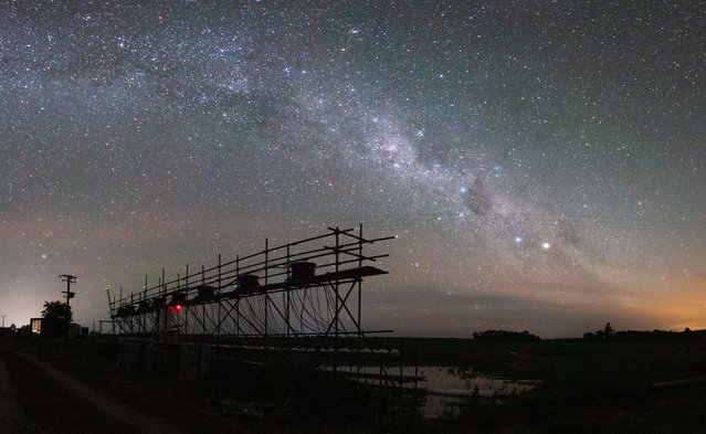 Ecology in action category student winner: Constant Flow by James Orr (Trinity College Dublin). This photograph is a panorama made up of multiple long-exposure photographs of the Milky Way above an experimental stream system made up of 128 mesocosms. As part of his PhD, Orr helped to run a multiple-stressor experiment testing the individual and combined effects of different climate-change stressors on freshwater food webs. Each of the 128 mesocosms, or medium worlds, had a diverse ecosystem from bacteria to fish. (Photo by James Orr/2020 British Ecological Society Photography Competition)