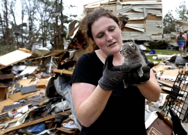 Maeghan Hadley, of One Day Ranch pet rescue, checks over a kitten pulled from under the rubble of a mobile home destroyed by Sunday's tornado in the Steelman Estates Mobile Home Park, near Shawnee. (Photo by Sue Ogrocki/Associated Press)