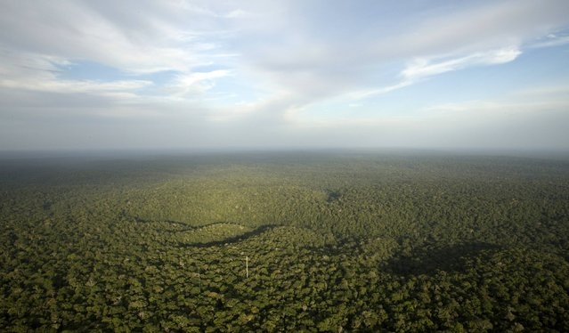 A view is seen from the Amazon Tall Tower Observatory (ATTO) in Sao Sebastiao do Uatuma in the middle of the Amazon forest in Amazonas state January 10, 2015. (Photo by Bruno Kelly/Reuters)