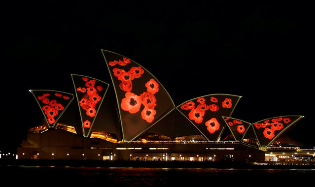 The sails of the Sydney Opera House are lit with poppies commemorating the armistice ending World War One on Remembrance Day in Sydney, Australia November 11, 2016. (Photo by Jason Reed/Reuters)
