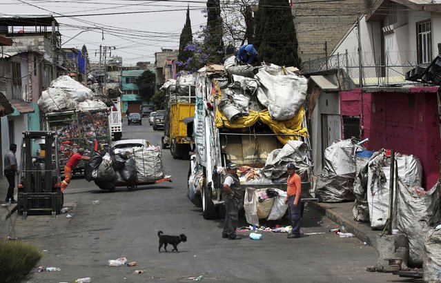 Trash pickers unload garbage in Mexico City, Monday, March 29, 2021. In Mexico, scavengers help municipal workers on garbage trucks and often collect trash from neighborhoods not served by authorities. (Photo by Marco Ugarte/AP Photo)