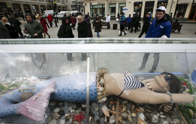 People look at a dummy of a seamaid which is on display near a street fish market in central Moscow, April 24, 2015. (Photo by Sergei Karpukhin/Reuters)