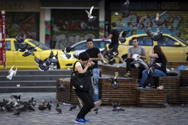 A tourist surrounded by pigeons tries to take pictures at Monastiraki Square in Athens, Greece June 28, 2015. Greece's European partners shut the door on extending a credit lifeline to Athens, leaving the country facing a default that could push it out of the euro and cause ripple effects across the European economy and beyond. (Photo by Marko Djurica/Reuters)