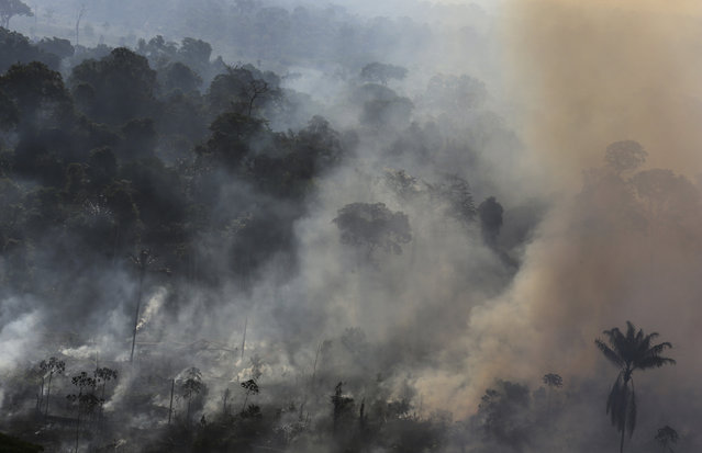 The destruction of Brazil's Amazon forest, the world's largest intact rain forest, increased by 16% in 2015 as the government struggled to enforce legislation and stop illegal clearings in a region the size of Western Europe. The government considers illegal logging the main factor behind the deforestation of the Amazon region, with about 5,000 square km of rain forest destroyed every year. Illegal logging relies on corruption and could not occur without some form of consent from government officials responsible for protecting forests, according to a report by the United Nations and Interpol. (Photo by Nacho Doce/Reuters)