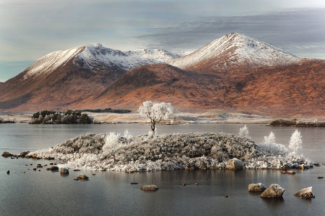 Ghost of Rannoch Moor, Scotland, 2013. (Photo by David Breen/The Guardian)