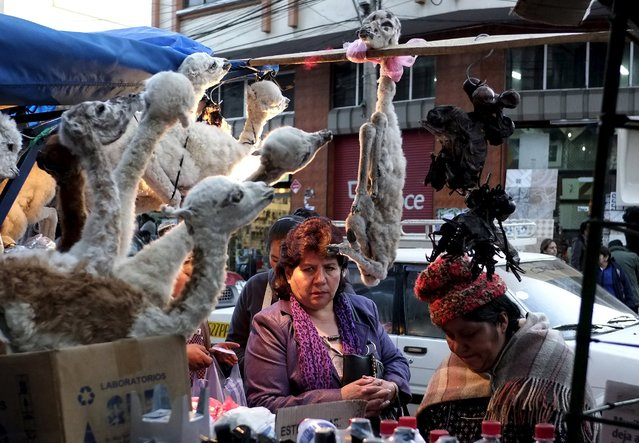 A woman (C) shops for an offering at the witch doctor's street in La Paz, July 31, 2015. (Photo by David Mercado/Reuters)