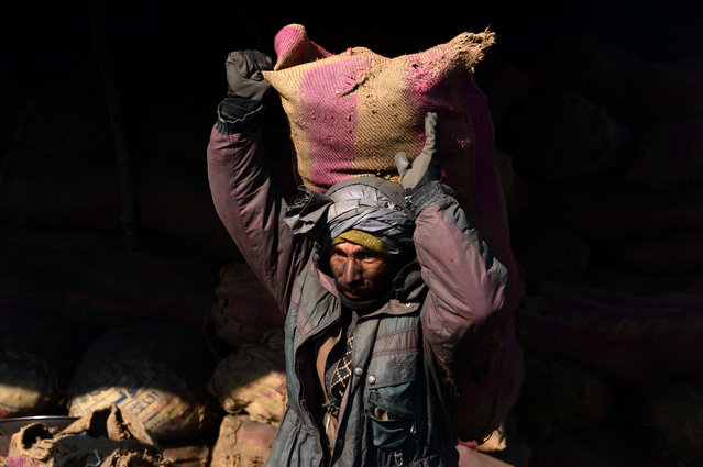 An Afghan day-labourer carries a sack of coal over his shoulder at a coal yard in Herat on November 29, 2016. (Photo by Aref Karimi/AFP Photo)