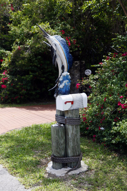 A mailbox decorated with a model fish is seen along the highway US-1 in the Lower Keys near Key Largo in Florida, July 10, 2014. (Photo by Wolfgang Rattay/Reuters)