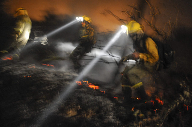 Firemen try to suffocate the flames during a forest fire at Cualedro in Galicia, Spain, 30 August 2015. The fire has already burnt 2,000 hectares. (Photo by Brais Lorenzo/EPA)