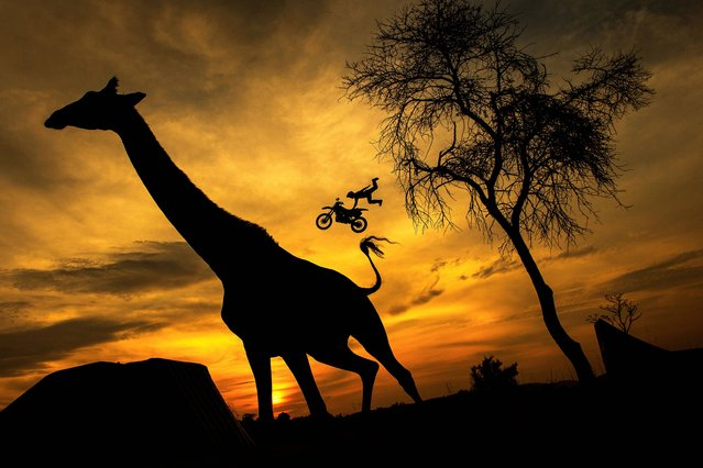 In this Wednesday, August 20, 2014 photo released by Red Bull, Maikel Melero of Spain warms up prior to the fifth stage of the Red Bull X-Fighters World Tour in the South African savanna of Pretoria, South Africa. (Photo by Joerg Mitter/AP Photo/Red Bull)