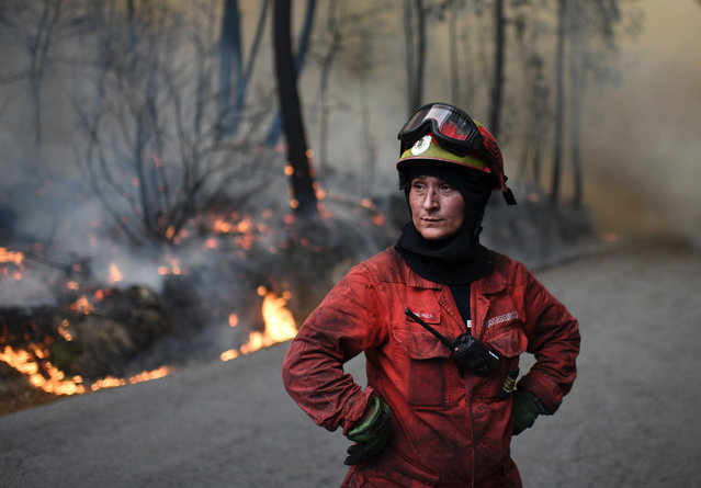 "A firefighter stands as she tackles a wildfire in Torredeita near Viseu, central Portugal, on August 9 2016. Forest fires, raging since Friday in northern Portugal, had redoubled in vigor late yesterday, mobilizing more than 3,000 men fighting against 160 fires, eight classified as ""important"". (Photo by Francisco Leong/AFP Photo)"