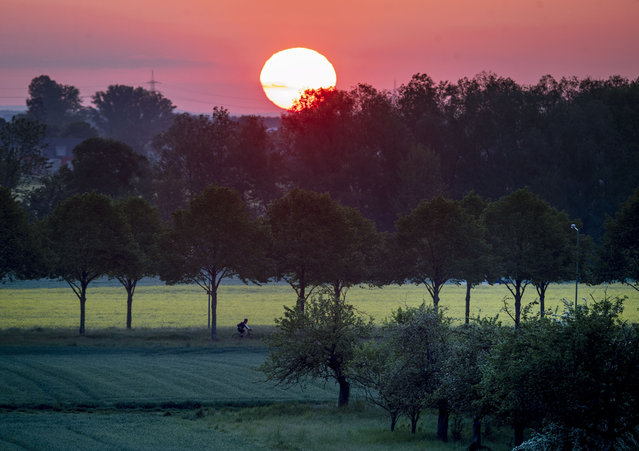 A man rides his bike on a small road as the sun rises in Frankfurt, Germany, early Tuesday, May 5, 2020. (Photo by Michael Probst/AP Photo)