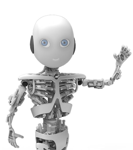 ROBOY: Tendon Driven Humanoid Robot