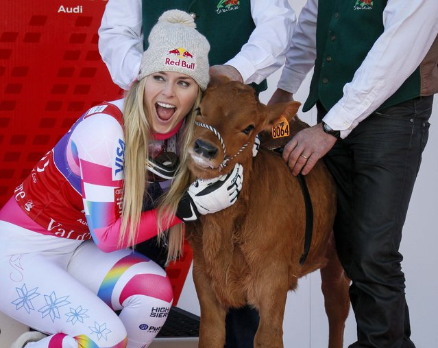 Lindsey Vonn of the U.S. poses for photographers with a cow she won as a prize after finishing first in the women's World Cup Downhill skiing race in Val d'Isere, French Alps, December 20, 2014. (Photo by Robert Pratta/Reuters)