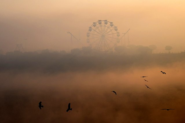 Birds fly amid heavy smoggy conditions in Lahore, Pakistan on December 7, 2020. (Photo by Arif Ali/AFP Photo)