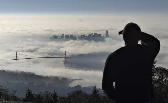 A man looks out over fog covered downtown and Lions Gate Bridge in Vancouver, British Columbia October 17, 2013 in this view from nearby Cypress Mountain. (Photo by Andy Clark/Reuters)