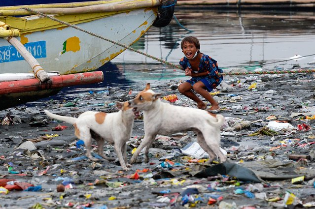 A boy reacts as dogs play along the riverbank of Pasig river, in Manila, Philippines, June 10, 2021. (Photo by Lisa Marie David/Reuters)