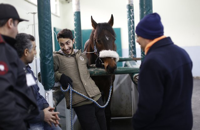 Grooms chat as they wait with a racehorse for a medical check at Veliefendi equine hospital in Istanbul March 11, 2015. (Photo by Murad Sezer/Reuters)