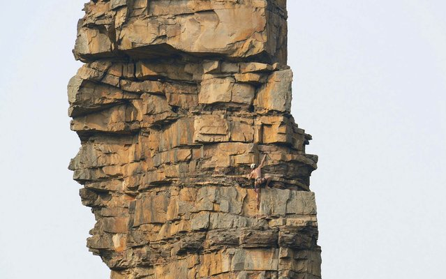 """Li Tongxing climbs a mountain in Zhang Jiajie, Hunan province. According to local media, mountain climbing fan Li intended to become the first nude mountain climber in China. He climbed a peak named """"Alpaca"""" in Zhang Jiajie within 1 hour and 40 minutes on , on January 27, 2014. (Photo by Reuters/Stringer)"""