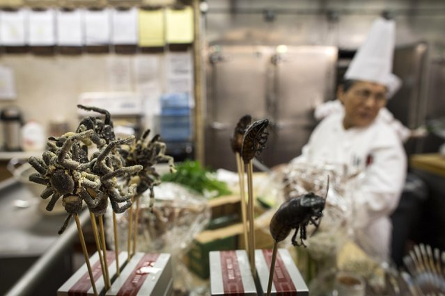 Cooked tarantulas and cockroaches are displayed on skewers in the kitchen before the 110th Explorers Club Annual Dinner at the Waldorf Astoria in New York March 15, 2014. (Photo by Andrew Kelly/Reuters)