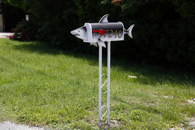 A mailbox in the shape of a shark is seen along the highway US-1 in the Lower Keys near Key Largo in Florida, July 10, 2014. (Photo by Wolfgang Rattay/Reuters)