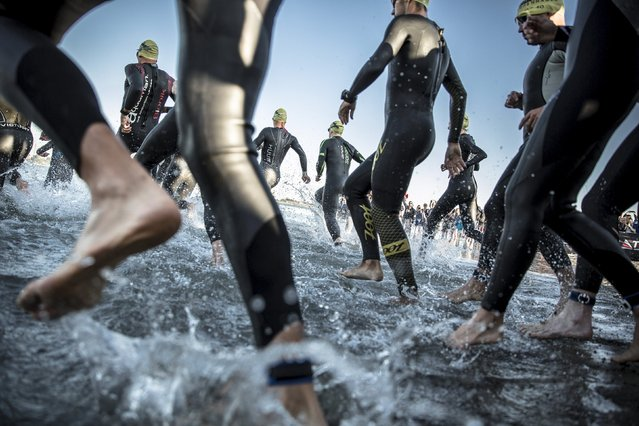 Triathletes take part in the 3800 m swimming leg of the KMD Ironman Copenhagen 2015 in Copenhagen August 23, 2015. (Photo by Nikolai Linares/Reuters/Scanpix Denmark)