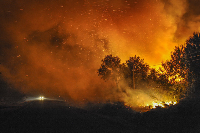 General view of a forest fire at Cualedro in Galicia, Spain, 30 August 2015. The fire has already burnt 2,000 hectares. (Photo by Brais Lorenzo/EPA)