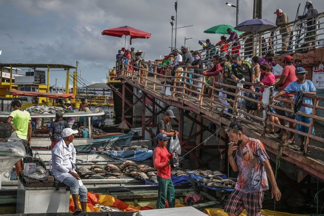 View of the fishing market at Manaus port, on May 20 2020 in Manaus, Brazil. This traditional trade area in the Amazonas region remains in operation despite the coronavirus (COVID-19) pandemic. (Photo by Andre Coelho/Getty Images)