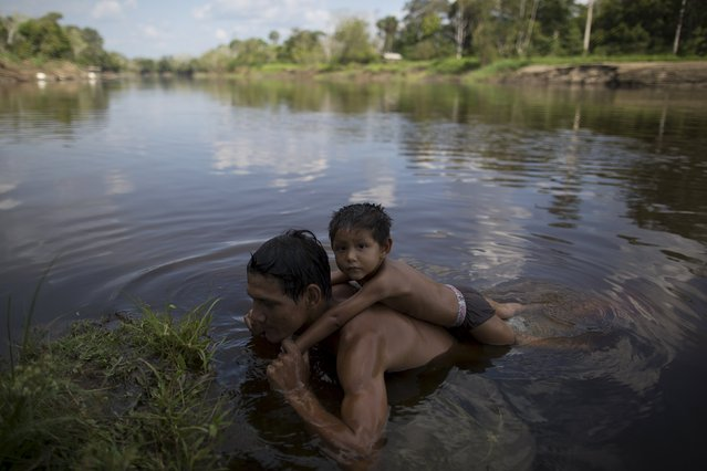 A man swims with his kid on the waters of the Parana do Amana river at Vila Nova do Amana community in the Sustainable Development Reserve, in Amazonas state, Brazil, September 22, 2015. (Photo by Bruno Kelly/Reuters)