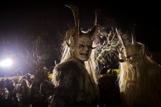 Participants dressed as the Krampus creatures walk the streets during Krampus gathering on November 22, 2014 in Schladming, Austria. Krampus is a demon-like creature represented by a fearsome, hand-carved wooden mask with animal horns, a suit made from sheep or goat skin and large cow bells attached to the waist that the wearer rings by running or shaking his hips up and down. (Photo by Matej Divizna/Getty Images)