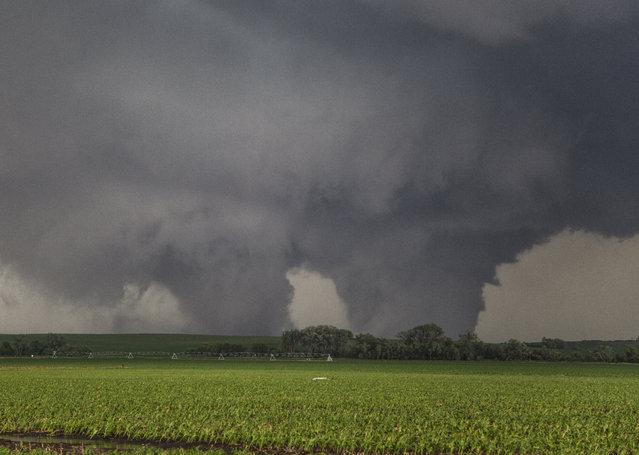 Two violent EF4 tornadoes leave destruction in their wake, on June 16, 2014, in Pilger, Nebraska. (Photo by Roger Hill/Barcroft Media)