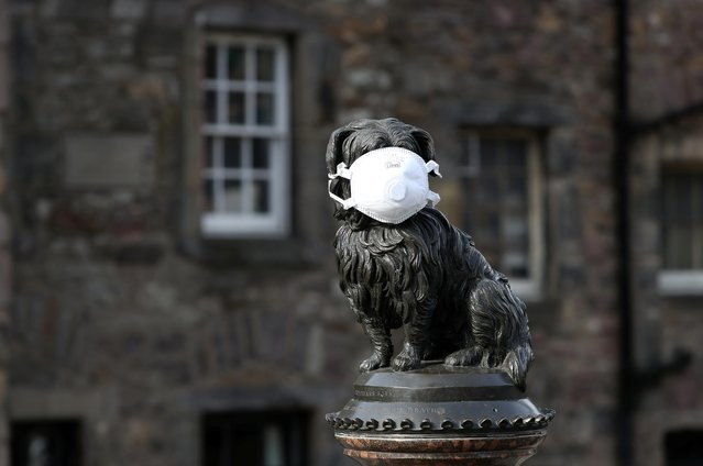 The Greyfriars Bobby statue is pictured wearing a mask as the spread of the coronavirus disease (COVID-19) continues, in Edinburgh, Scotland, Britain, March 23, 2020. (Photo by Russell Cheyne/Reuters)