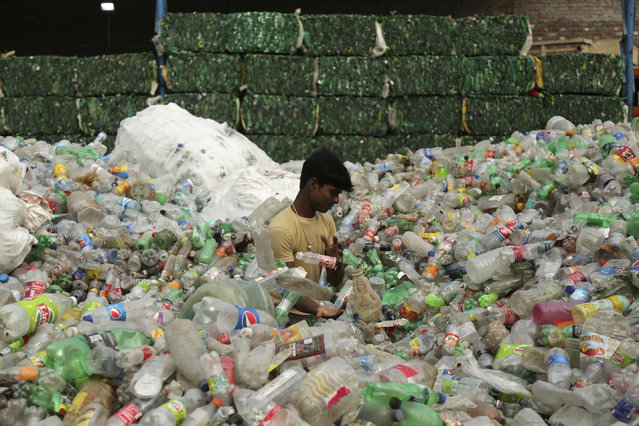 An Indian worker sorts used plastic bottles before sending them to be recycled at an industrial area on the outskirts of Jammu, India, Tuesday, June 5, 2018. The U.N. says government bans on plastic can be effective in cutting back on waste but poor planning and follow-through have left many such bans ineffective. (Photo by Channi Anand/AP Photo)