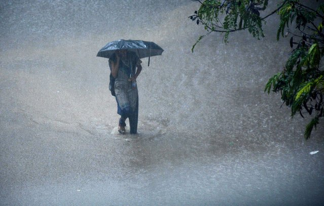 A young Indian woman walks under an umbrella through floodwaters in Chennai on December 1, 2015, during a downpour of heavy rain in the southern Indian city. (Photo by AFP Photo/Stringer)