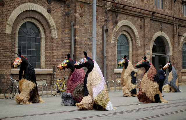 "Dancers dressed as a horses walk away at the end of a preview of American artist Nick Cave's first major work shown in Australia, entitled HEARD.SYD in Sydney, November 8, 2016. Over several days the live art performance will feature 30 ""horses"" dancing to live percussion beats in suits made from coloured raffia plant fibres. (Photo by Jason Reed/Reuters)"