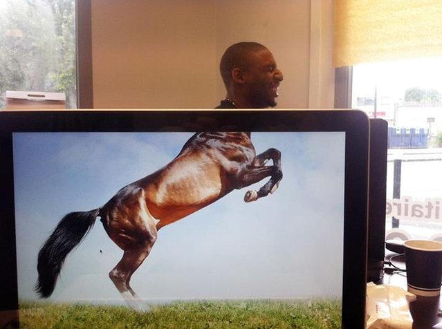 Desk Safari By Mike Whiteside. Part1