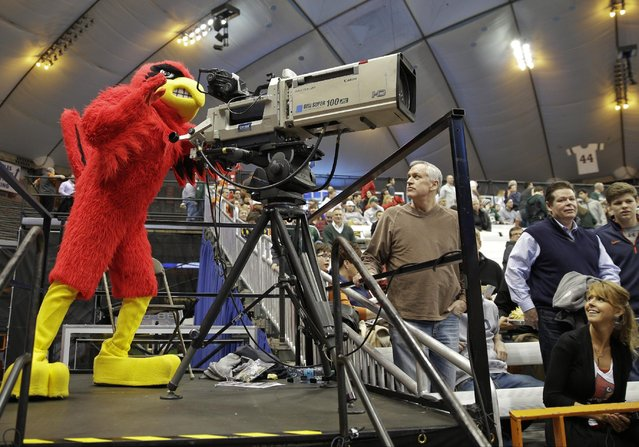 Louisville's mascot stands behind a television camera before Louisville's regional semifinal against North Carolina State in the NCAA men's college basketball tournament Friday, March 27, 2015, in Syracuse, N.Y.  (Photo by Seth Wenig/AP Photo)