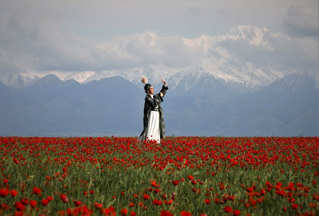 A woman wearing a Kazakh traditional costume poses for a picture in front of her acquaintance in the field of blooming poppies near the Tien Shan mountains in Almaty Region, Kazakhstan on May 16, 2021. (Photo by Pavel Mikheyev/Reuters)