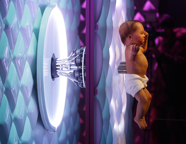 Animatronic baby London 2016, a mechanical human baby with an electronic umbilical cord is displayed, during a press preview for the Robot exhibition held at the Science Museum in London, Tuesday, February 7, 2017. (Photo by Alastair Grant/AP Photo)
