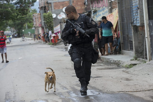 "A Special Police Operations Battalion (BOPE) officer is chased by a barking dog during an operation in the Mare slum complex, ahead of its ""pacification"", in Rio de Janeiro, Brazil, Wednesday, March 26, 2014. Elite federal police and army troops will be sent to the city to help quell a wave of violence in so-called ""pacified"" slums. (Photo by Silvia Izquierdo/AP Photo)"