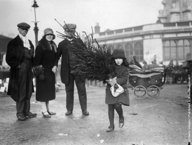 1929: A little girl taking home her Christmas Tree, bought from Caledonian Road Market, London