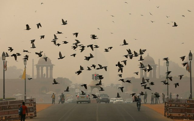 Birds fly as people commute near India's Presidential Palace on a smoggy day in New Delhi, India, November 1, 2019. (Photo by Anushree Fadnavis/Reuters)