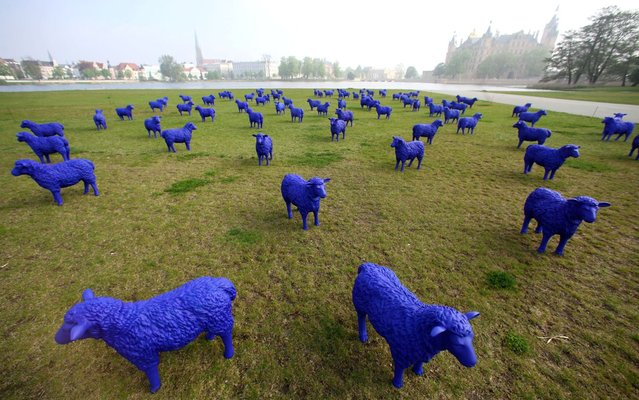 A flock of blue plastic sheep stand in front of the Schwerin Castle